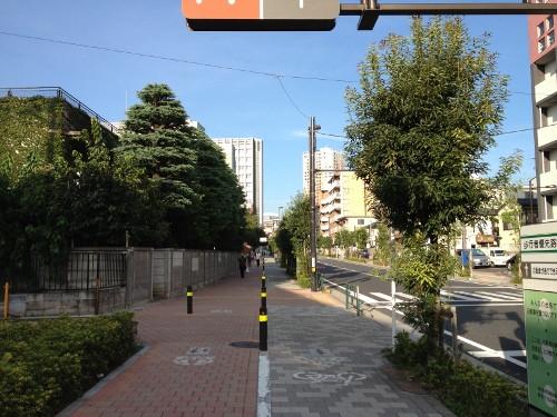 Img_1667_500x375